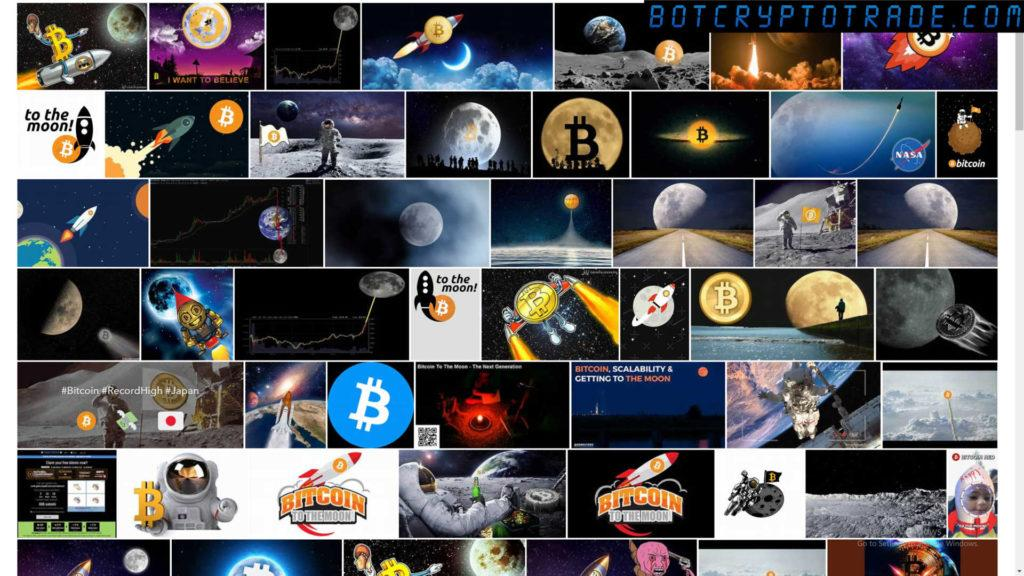 Will Bitcoin and Cryptocurrency Rise or Fall 2021